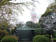 徳川将軍家墓所。 以前、中に入った時に感じた事ですが、かなりの狭さと言うか、ギッシリ詰まった感がします。勿論、当時はそんなに詰め込む訳が有りません。 霊廟は戦災で焼失した後、昭和33(1958)年夏、文化財保護委員会が中心となって、発掘された土葬の遺体は、綿密な調査が行われた後、東京・桐ヶ谷にて荼毘にふされ現墓所に改葬されました。 埋葬されているのは、二代秀忠、五代将軍兄弟の綱重、六代家宣、七代家継、九代家重、十二代家慶、十四代家茂の6人の将軍の他、女性では将軍正室として二代秀忠夫人崇源院、六代家宣夫人天英院、十一代家斉夫人広大院、十三代家定夫人天親院、十四代家茂夫人静寛院の5人、将軍の側室としては三代家光の桂昌院、六代家宣の月光院など5人、その他、将軍の子女を含む計38人です