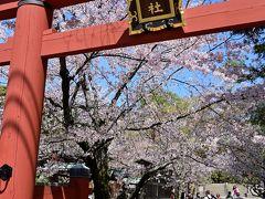 ●氷室神社  しばらく道なりに歩いてゆくと、通り沿いに一際目立つ「氷室神社」の朱色の鳥居が。 境内を桜が彩り、見るからに華やかな雰囲気なので、ちょっと寄り道していくことにしましょう。