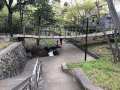 緑道を歩いていくと公園がありました。音無さくら緑地です。つり橋。小さなスリルを味わえそうですね。