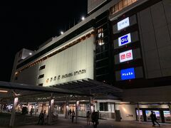 身延駅から普通電車で2時間以上揺られ、静岡駅に20時頃にようやく到着いたしました。