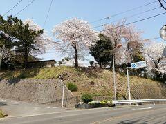 箕輪駅の跡。駅は、馬を提供し官吏の送迎に供したところ。奈良時代にさかのぼるようです。桜がきれいでした。