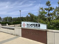 今回はいきなり「マリンピア日本海」からスタートします。マリンピア日本海は日本海側ではかなり大きな水族館でして、福島・会津の方からも訪れる人がいるとか。  私自身はマリンピア日本海を訪れたのは、大昔、2000年代初めに訪れたようなないような、記憶が定かではありません。それぐらいぶりです。ちなみに、1990年代のオープンしたての頃にも一応訪れたことはあります。しかし、マリンピア日本海自体、大規模改装を実施しているので、あまり記憶には残っていませんでした。