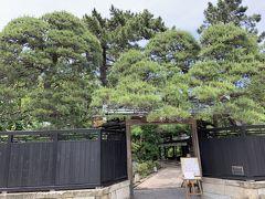 「旧斎藤家別邸」の隣には、高級料亭の「行形亭(いきなりや)」があります。料理は食べることができませんが、昼間は一部をカフェとしても利用できるので、行ってみました。
