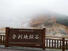 入浴後、近くにある地獄谷に行きました。硫黄の匂いや水蒸気の量がすごい💦  神奈川にも大涌谷がありますが、地獄谷の方が噴出口に近いのでより迫力がある。  温泉街をあとにします。