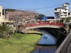 桜と宮橋。