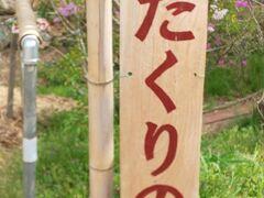 最後の訪問スポットは「カタクリの里」カタクリが咲いている時期だけ開くらしい。