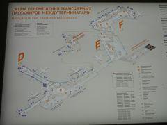 モスクワ着陸17:22(定刻17:35)飛行時間9時間35分。出発遅れたけど早く着いた。飛行機は沖止めでバスでターミナルDへ。エスカレーターで2階へ行くと Transfer のゲートはすごい人!40分待ってやっと通過、その後セキュリティチェック。そして搭乗ゲート(下の階D5)まで5分、飛行機着陸後1時間30分かかった!モスクワはここが難点なのよねぇ。。。