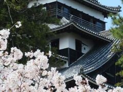 こちらが国宝天守。 ちなみに国宝5城とは、姫路城(白鷺城)・彦根城(金亀城)・松本城(深志城)・犬山城(白帝城)を指しますよ。