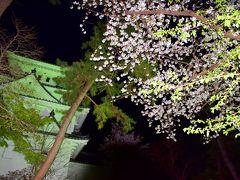 夜の大垣の街でちょこっとだけ春色風景探し延長戦 大垣の街中をぶらり散策してみると、大垣城周辺などで満開に咲き広がる、春のこの時期限定な美しい桜色をここでもたくさん見つけることが出来ましたけど・・・