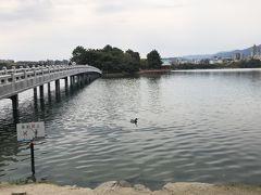 大濠公園の景色