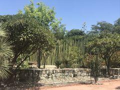 オアハカ民族植物園