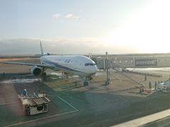 ゲート到着後は乗ってきた機体を見て…