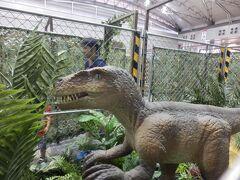 B1の千葉ジェッツのホームタウンを少し見つつ、 幕張の迷路王国へ  恐竜がいたぁ~!!