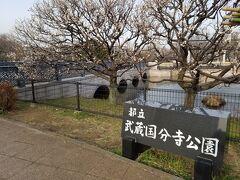今度は武蔵国分寺公園にやってきました。
