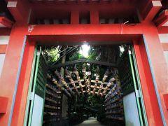 亜熱帯植物が島全体を覆い尽くす青島だが、そのジャングルの中にあるのが青島神社の絵馬の回廊。