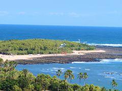 """青島は貝殻が堆積してできた島だが、その島の基礎となる部分は貝殻ではなく""""隆起波食台""""と呼ばれるこの地方独特の特殊な地形。  未だ地球の大地がしっかりと固まりきれていなかったほどの遠い昔、砂岩と泥岩が交互に重なった山(巨大なミルフィーユをイメージ!)が海の中へと沈み、更に長い年月をかけて寄せて返した海波がその表面を階段状に削った地形で、その様子がまるで巨大な洗濯板のように見える事から""""鬼の洗濯板""""と呼ばれる地形だ。  一枚前の写真は宿泊した宿から眺めた満潮時の青島で、特徴的な鬼の洗濯板地形はほとんど見えていない。 しかし、この写真は干潮時の青島を高台から眺めたモノで、貝殻でできた緑豊かな島の周りに、潮が引いて現れた鬼の洗濯板地形が大きく広がっているのが分かる。  (写真:干潮時の青島)"""