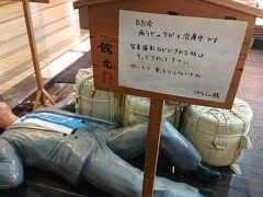 越後湯沢駅でお買い物。  こちらのよっぱらいさんはどうやら腕を負傷した模様。
