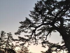 7:30の夜明けに間に合うように伊勢市駅から歩いてみました。 1時間位歩きました。朝のお散歩。