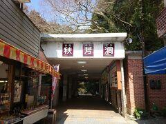 湯田温泉から30分、ようやく秋吉台の秋芳洞に到着しました。