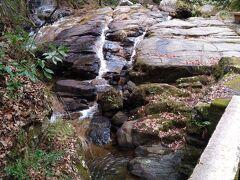 急な下り道が終わり平坦な道に出ると、滝から流れ出る水でできた川と出会う。 川沿いを少し歩いた後、瀬戸大滝に到着。