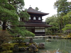 次は銀閣寺に来ました。 金閣寺もそうですが、寺だけじゃなく庭園も素晴らしい。