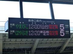 昨年の夏に岩手へ行って以来の旅行です。  これまで福島へは車で行っていましたが、雪道はこわいので、新幹線の一択です。 まずは東京駅からやまびこで郡山へ。