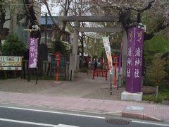 「鴻神社」桜が綺麗でした。 8:35通過。