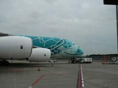 ドン!! 成田空港へ着陸しました~。  フライングホヌゥゥゥの横に駐機です。 みんな大好き、沖止め。