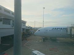 早朝のシドニー空港にほぼ定刻で到着となりました。