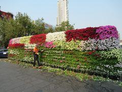 途中で花を刈っている作業場に出会いました。どんな感じになるのでしょうか。