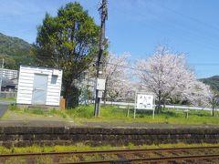 桜咲く吉井駅です。この駅から分岐していたという国鉄世知原線は1971年12月26日に廃止されたそうです。それもあってか、広めの敷地の駅のように感じました。