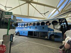 ホテルへ移動するマジカルエキスプレスバスはミッキーネットさんから予約しました(費用は掛かりません)!WDWは敷地が広いので近いホテルごとに固まって移動します。バスの中でもディズニー関連の動画が流れてワクワク!