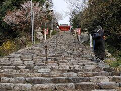 伊佐爾波神社 神社って聖域って、みんな段々の上。ぜえぜえ。