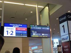 この時期の航空券は高い・・・。 そしてシカゴ行きの直行便は日系しかない(共同運航だけど)ため 高い。13万5000円。ユナイテッドとANA共同。 羽田発、オヘア到着。 10時25分発。