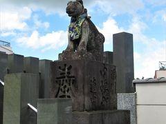 鮮やかなスカーフをしたおしゃれな狛犬を発見!
