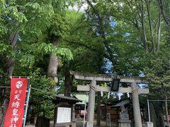 川沿いに神社発見。寄り道してみます。天縛皇神社でした。大きな神木がありました。今日はこの辺で戻ります。