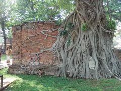 """なんと言っても""""菩提樹の根に取り込まれてしまった仏像の頭""""でしょうか。アユタヤ観光に来てコレを見ないで帰るのはモグリです。過ぎ去った時のロマンと神秘さを感じます。"""