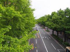 横浜山下公園通り