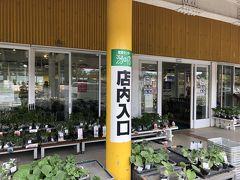 産直センター潟の店