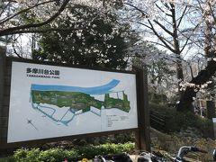 多摩川台公園の案内板 亀甲山(かめのこやま)は多摩川台公園って言うんだ~と感心しながら眺めました。