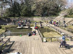 水生植物園(元調布浄水場跡地) かつて調布浄水場があった場所です。大正時代から昭和時代まで多摩川から取水して東京に上水を供給していました。浄水場であったことを残すため、濾過池・沈殿池をなるべくそのままの形で水生植物園・植物園に転用し、地下貯水場は水生植物園への貯水に利用しているそうです。