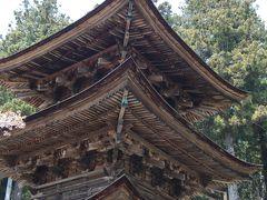 新海三社神社 龍岡城から1キロ離れた場所にある神社。 三重塔があった。
