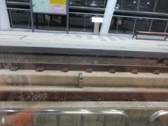 紅樹林駅を出てしばらくは高架の専用軌道を走ります。 真新しいコンクリート造りの軌道は、路面電車の常識を覆すかのようでした。 ※復路に撮影