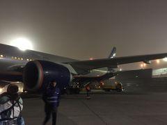 そうこうしているうちに到着しました、シェレメチボ空港。