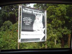 40分ほどして、最初の見学場所のターシャサンクチュアリ(メガネザルの保護区)に来ました。