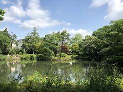 妙正寺公園 四季折々に楽しめるこじんまりとした公園です。公園には小さな妙正寺池と子供が遊べるエリアや中くらいの広場があります。