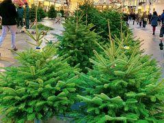 もっと驚いたのは、 ウィーン封鎖状態にも関わらず、 人がたくさん行き来していること。  みんな何しに来てるん?  クリスマス休暇は3日間続くのに、 果たして乗り切れるか。