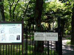 ここから旧渋沢庭園です。