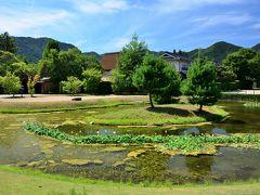 中へと入ってみると、発掘調査の成果を元に、かなりの広さの池泉庭園が復元整備されており、当時の大内氏の繁栄ぶりが偲ばれます。