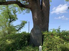 こちらが毛利氏発祥の地の石碑。これがずっと気になっていたので来れて良かったです。 まだまだ近場で行ったことのない場所があるので又探索したいと思います。